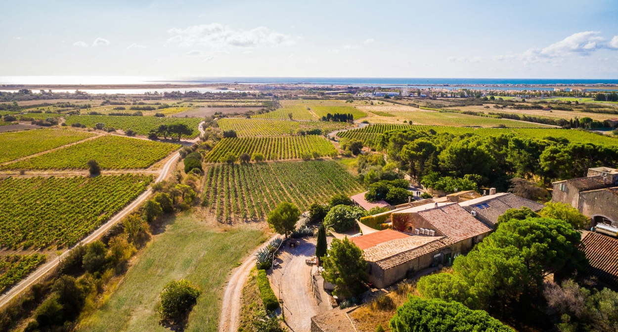 Winery near Narbonne ©Château le Bouïs