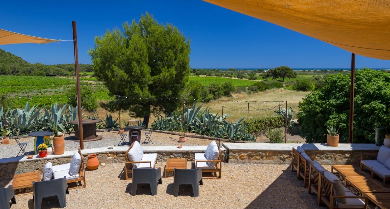 Restaurant surrounded by the estate's vines ©Château le Bouïs