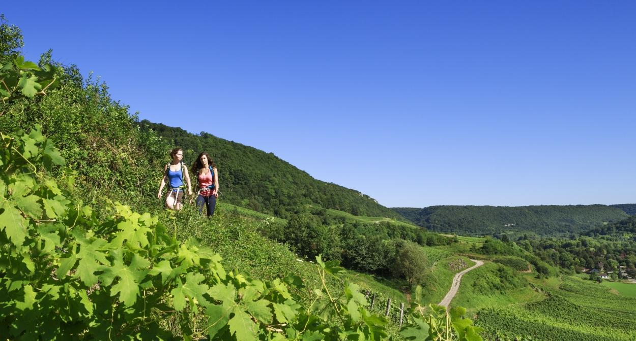 Hiking among the vines of Jura © Jura Tourisme