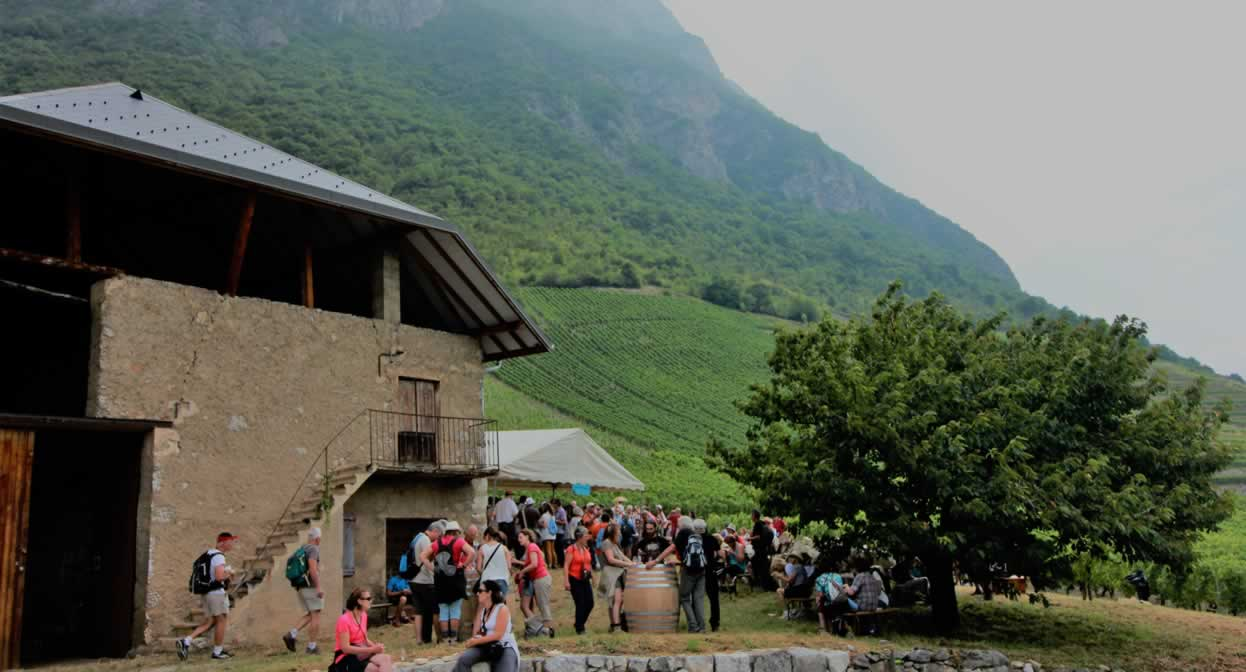 A tasty break in the Savoie vineyards © J. Hugot