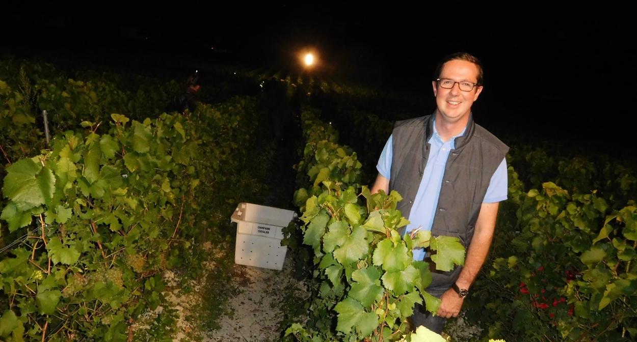 Bertrand Trepo - vendange de nuit en Champagne © Philippe Jacquemin
