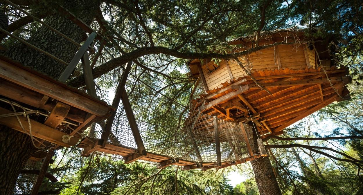 Cabane dans les arbres entre vignes, mer, montagnes@Domaine de l'Arbousier