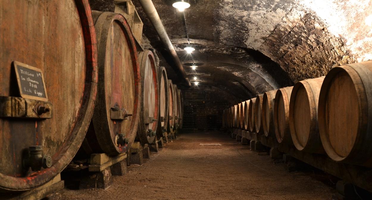 Cave voûtée du 18e siècle © Domaine Gérard BRISSON