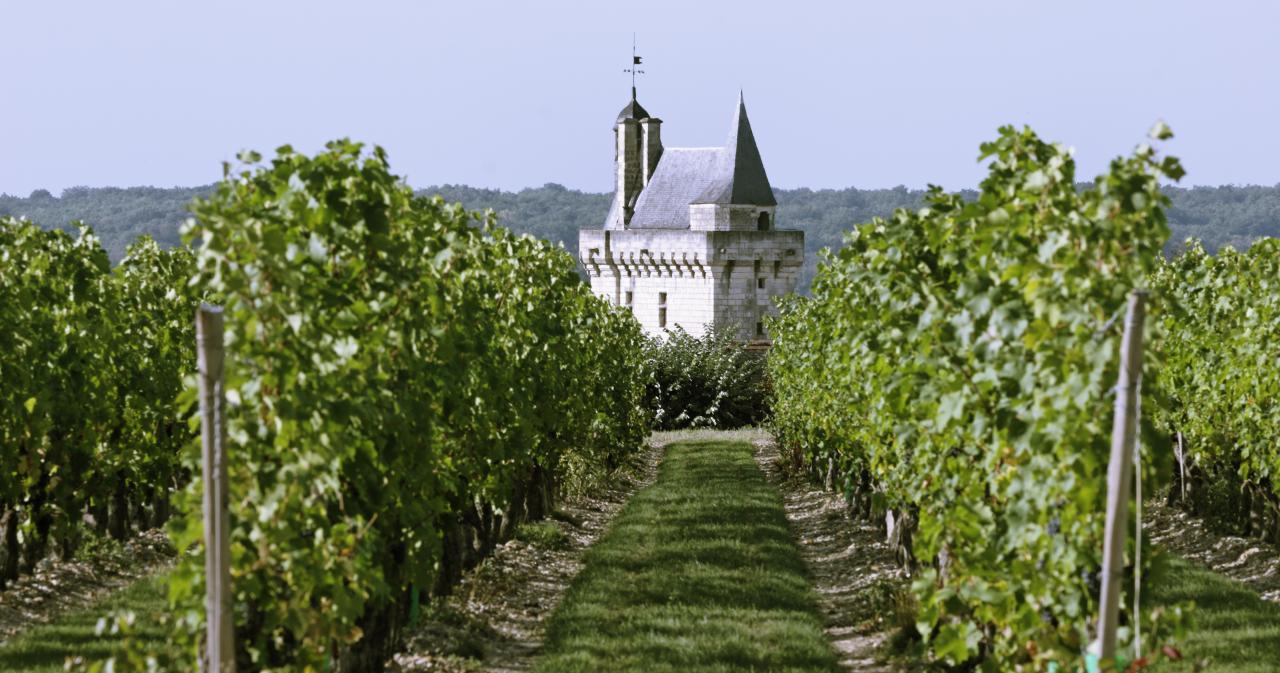 Château Chinon, Loire Valley