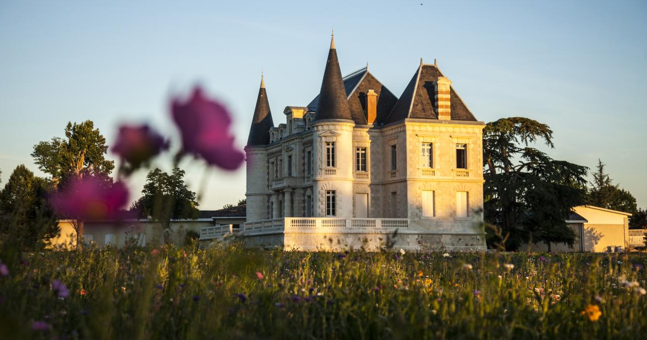 Château Lamothe Bergeron, Bordeaux vineyard ©Andy Julia