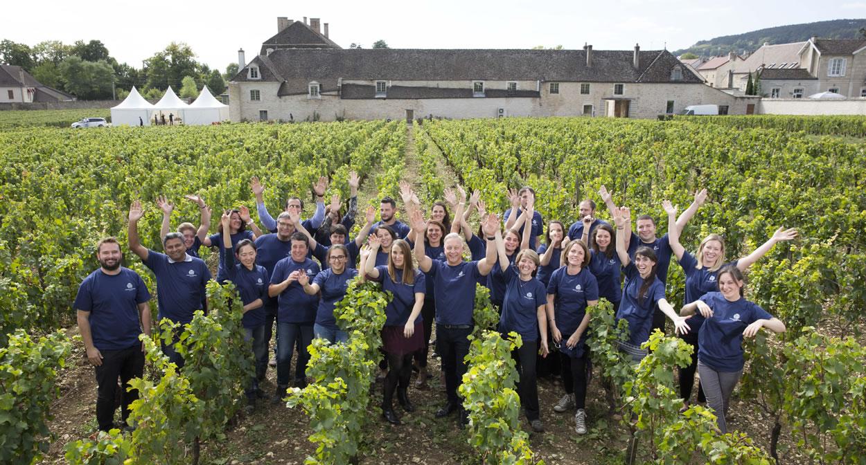 Et si vous participiez aux vendanges en Bourgogne © Château de Pommard