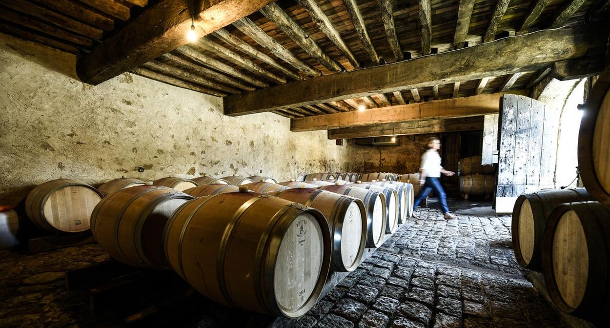 Cellar tour © ANAKA Photographie - Château de Cerons