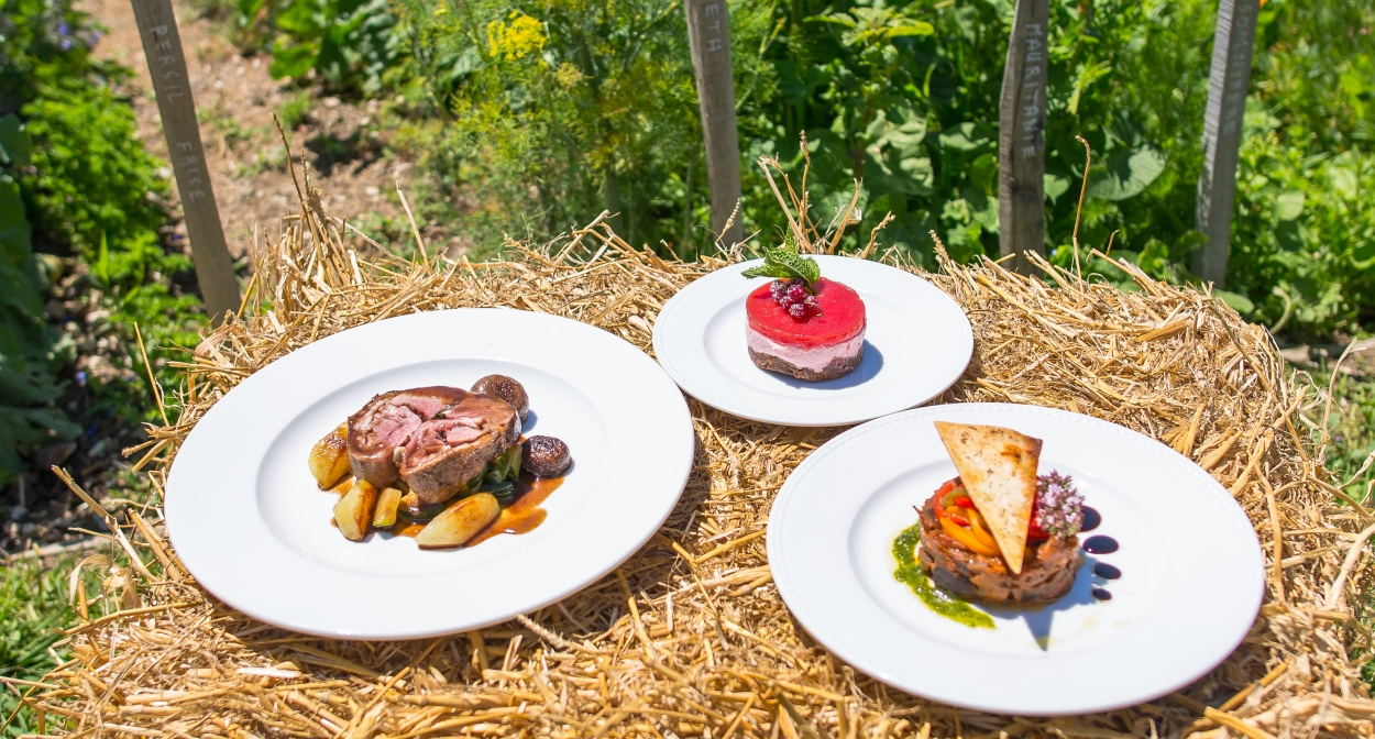 Chêne Bleu and its bistro style restaurant in the vineyard © L.Pamato
