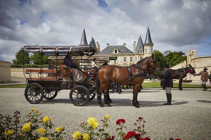 Discovery of a famous vineyard in a horse-drawn carriage in Bordeaux Cordeillan Bages ©All rights reserved