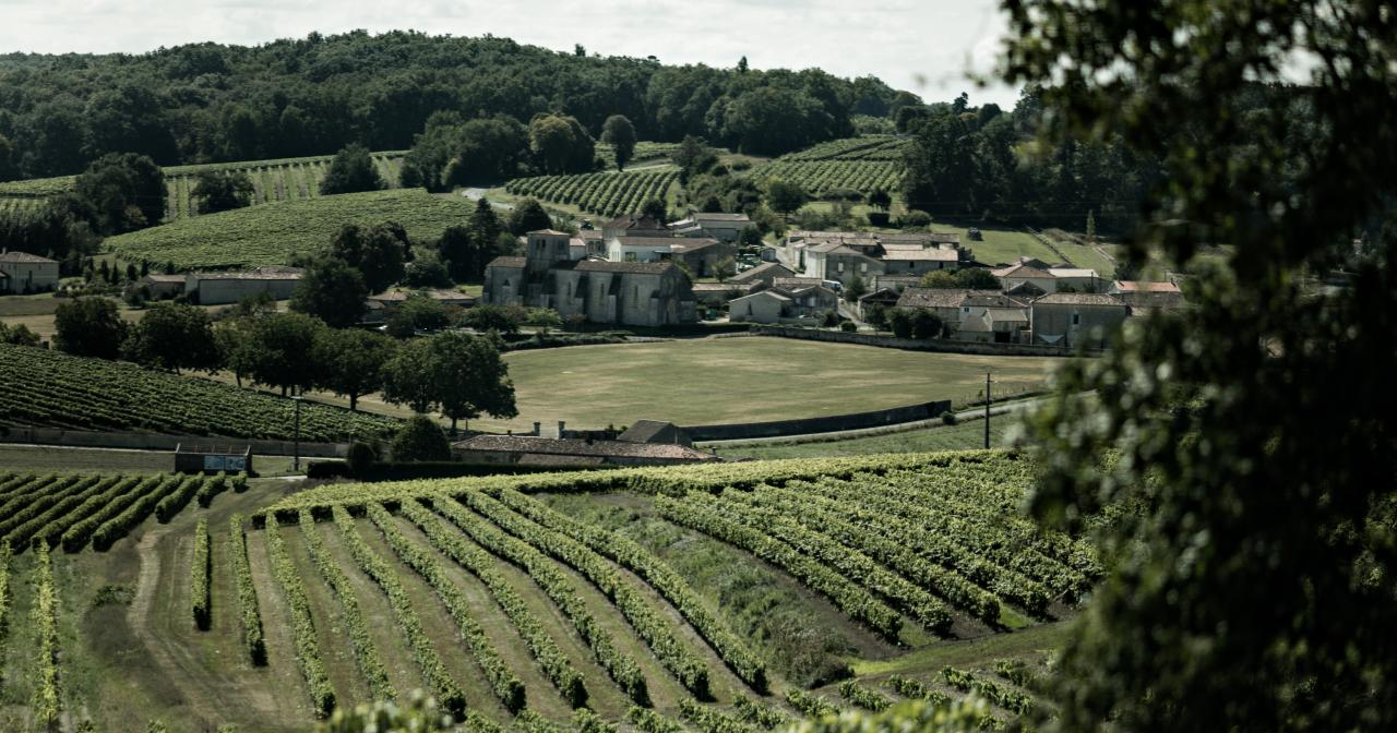 The Cognac terroir ©BNIC