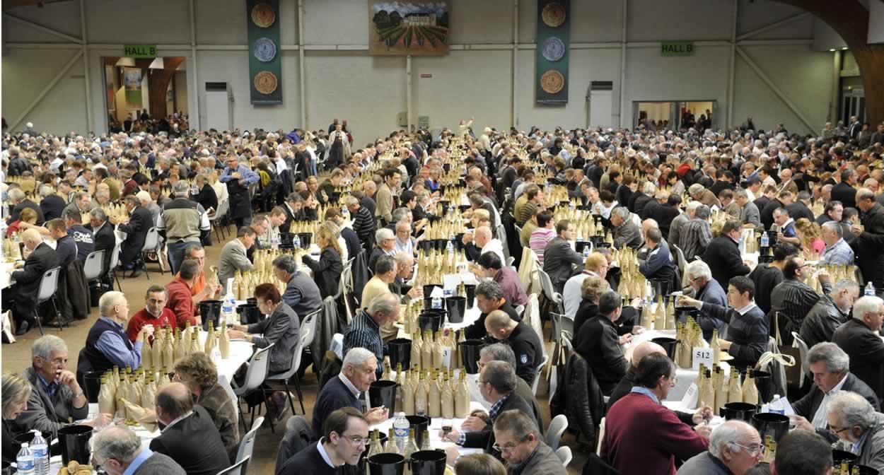 Concours des Grands Vins de France à Mâcon, vignoble de Bourgogne © Jerome Chabanne