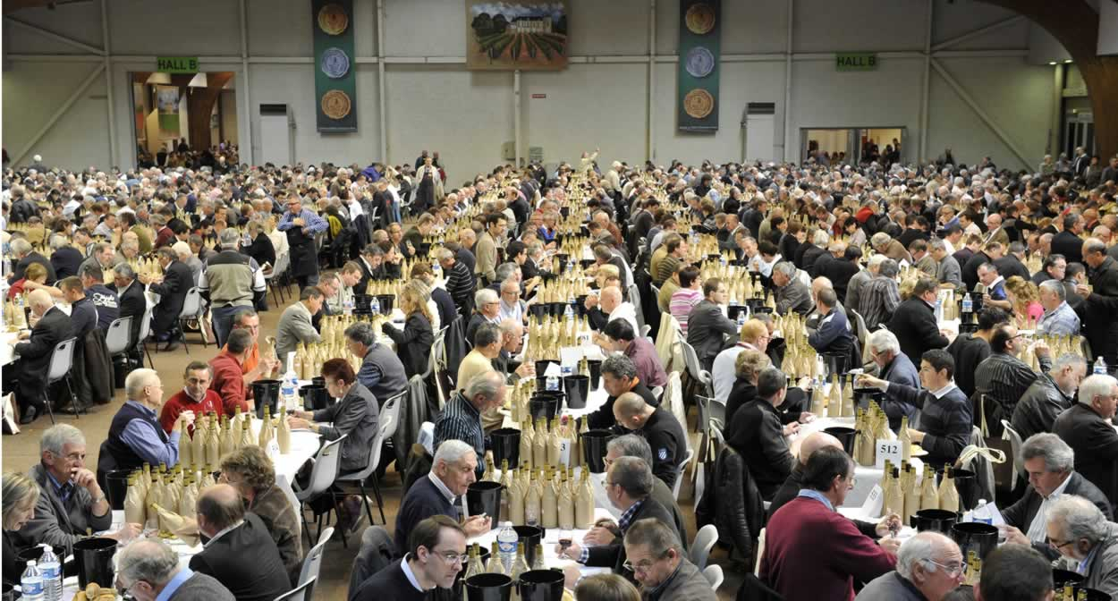 Concours des Grands Vins de France in Mâcon, Burgundy vineyard © Jerome Chabanne