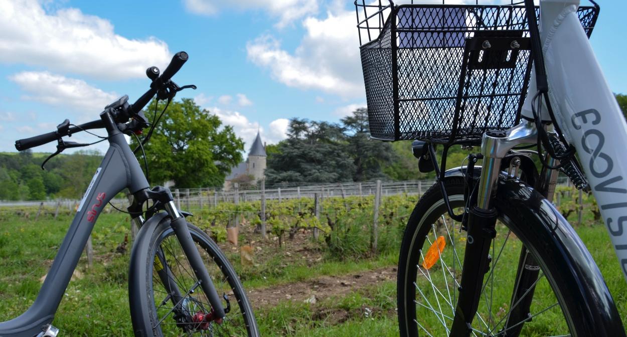 Vélos à assistance électrique dans le vignoble du Val de Loire ©Igers Bourgogne