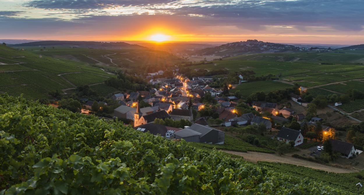 Côte des Monts Damnées, Sancerre, Vignoble du Val de Loire ©Henri Bourgeois