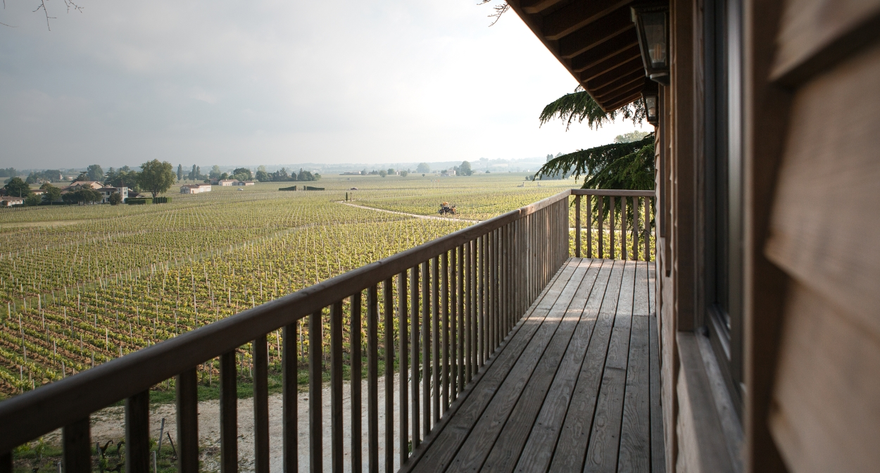 Incredible view of the vines at Château Franc Mayne © Julie Rey