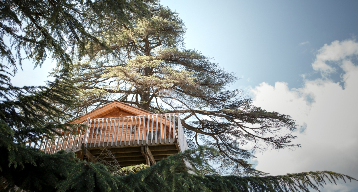 The tree house at Château Franc Mayne © Julie Rey