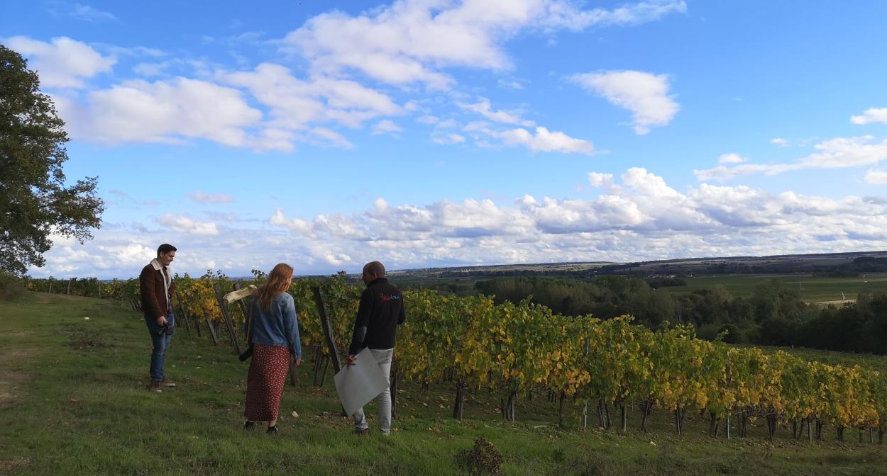 Balade dans les vignes ©A. Verger- CRT Centre Val de Loire
