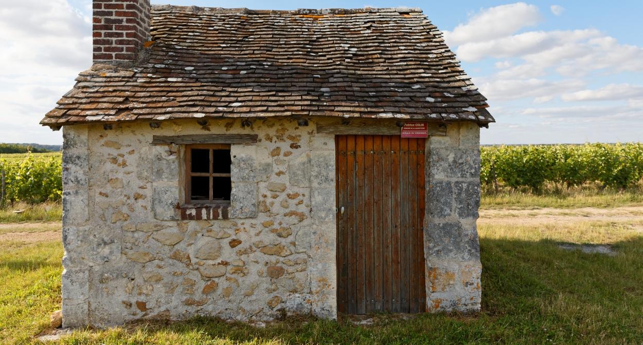 Maison de vignes au Domaine Colin, à Thoré-la-Rochette. AOC Coteaux du Vendômois © Mouton Christophe