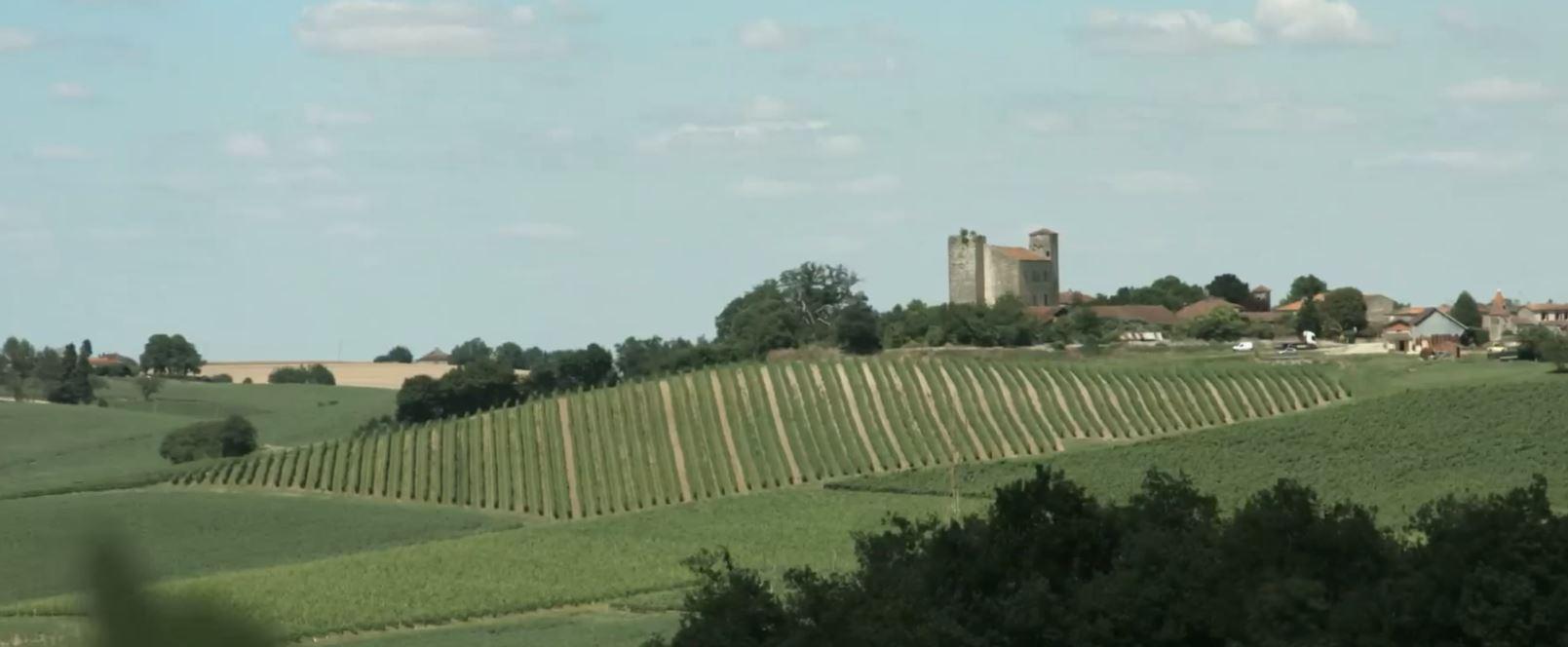 visit the vineyards of armagnac wine tourism. Black Bedroom Furniture Sets. Home Design Ideas