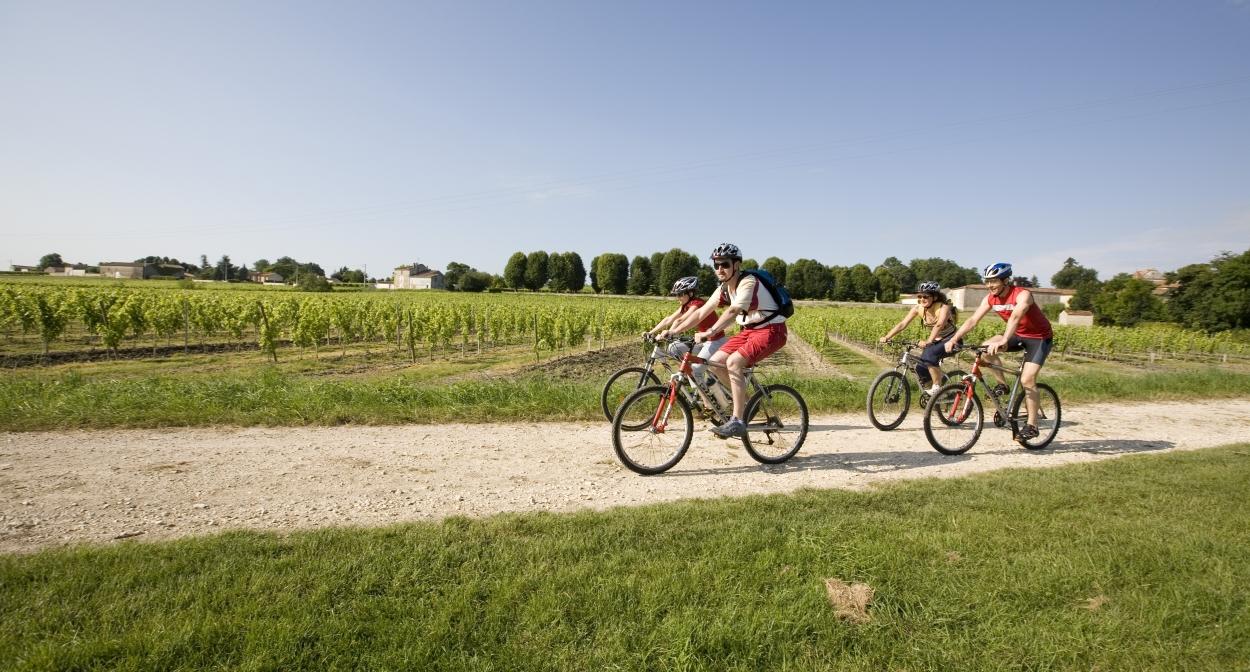Passing through a vineyard on La Flow Vélo © Sébastien Laval