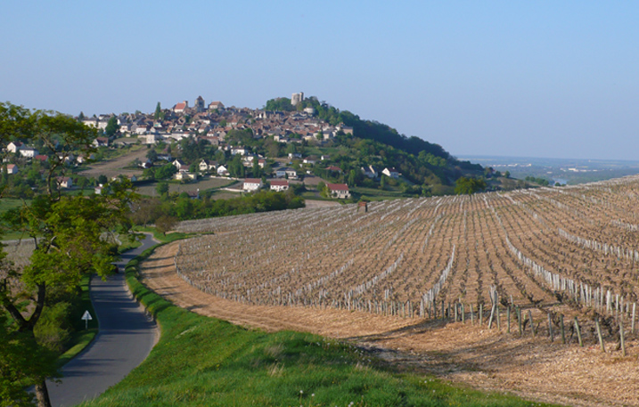 Vineyard of loire valley sancerre wine ©Julie Roumet
