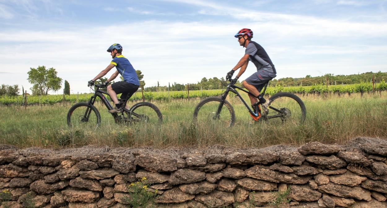 Vélo dans les vignes de Pierrevert © François Xavier Emery, OTC DLVA