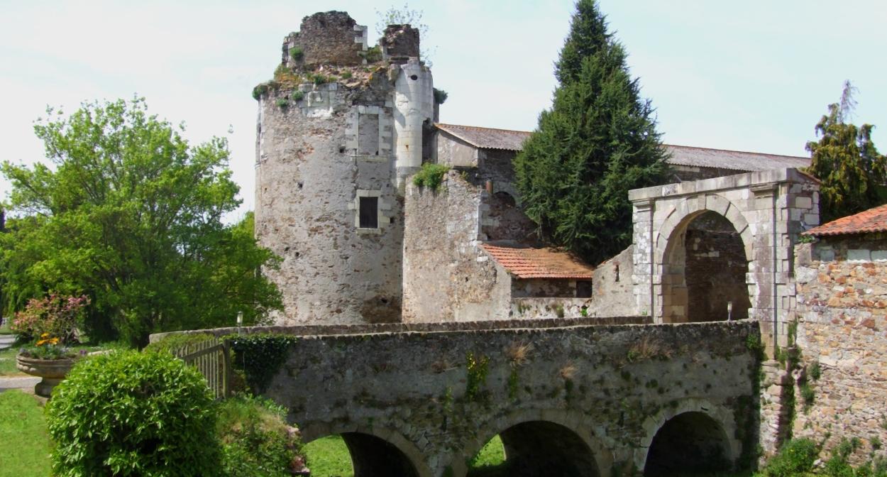 Domaine viticole près de Clisson © Château de la Galissionnière