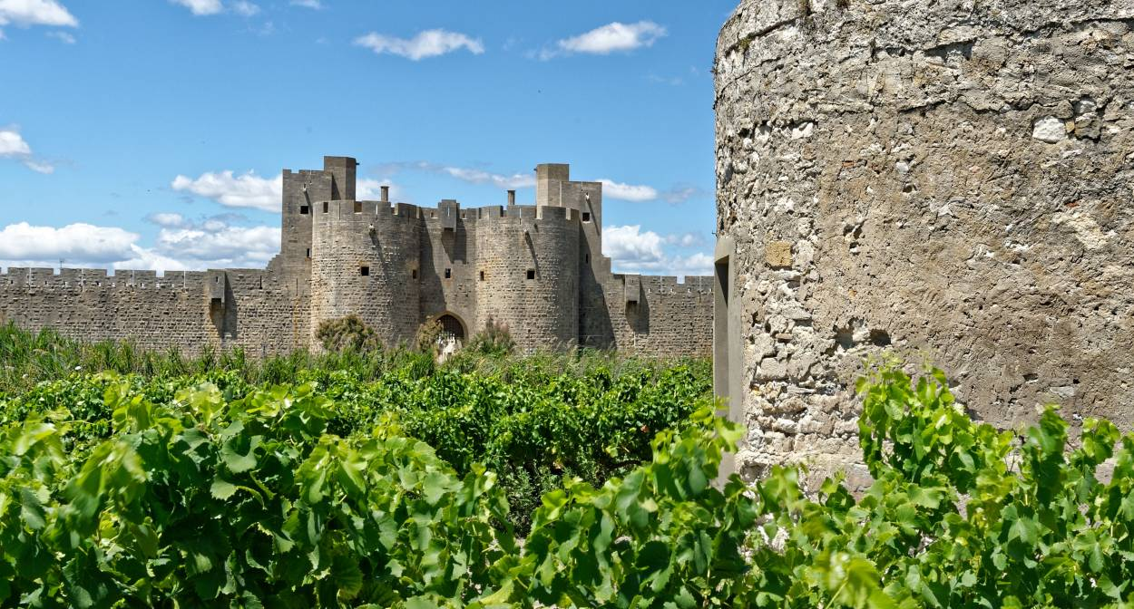 Remparts d'Aigues-Mortes © syndicat igp sable de camargue Vins des sables