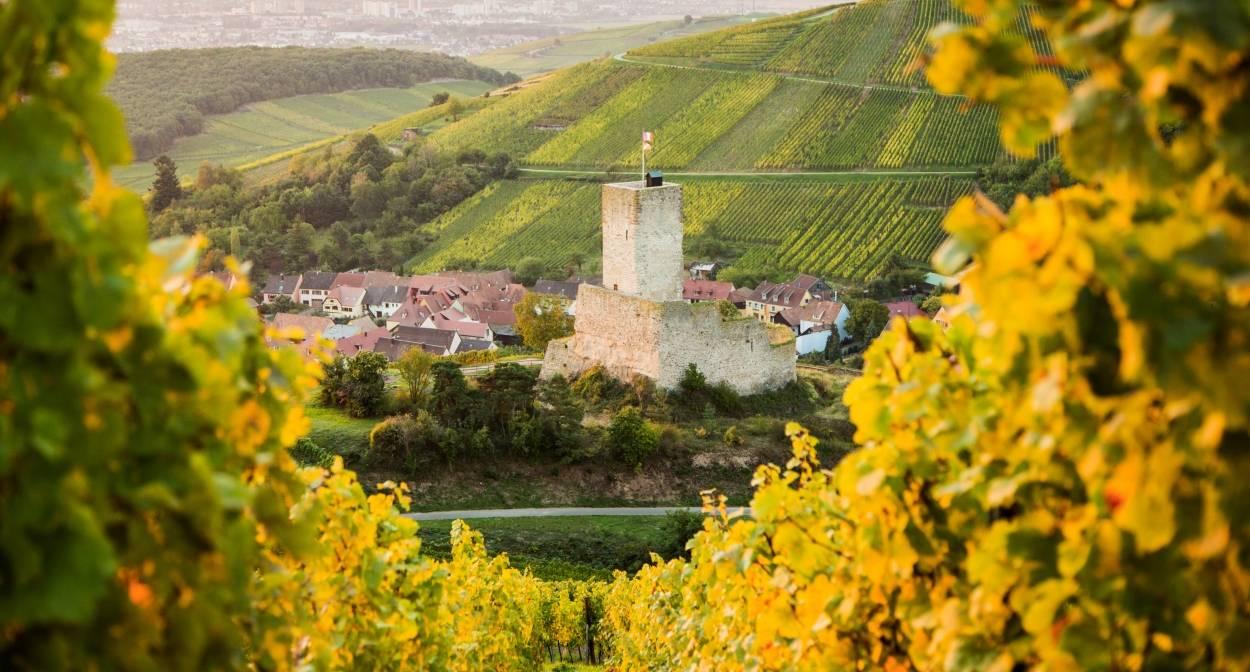 Le château de Wineck-Schlossberg à Katzenthal © VUANO-ConseilVinsAlsace