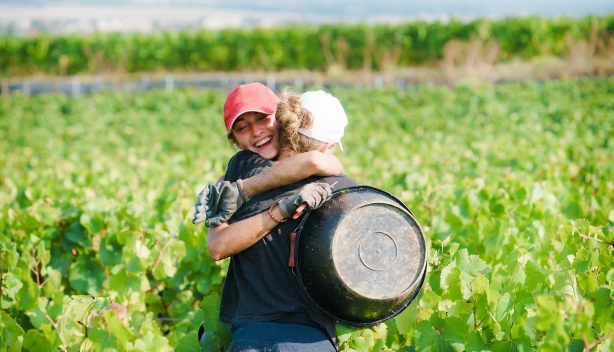 Grape picker for a day in Champagne © Cyrille Beudot