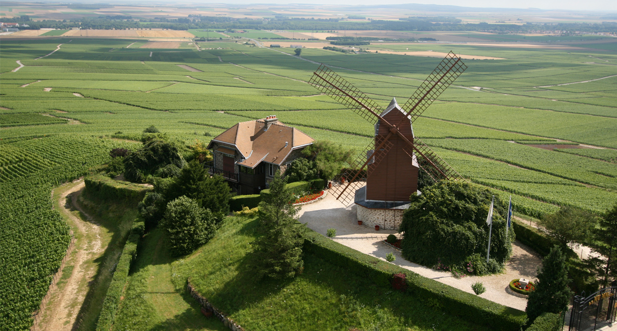 Moulin de Verzenay in champagne