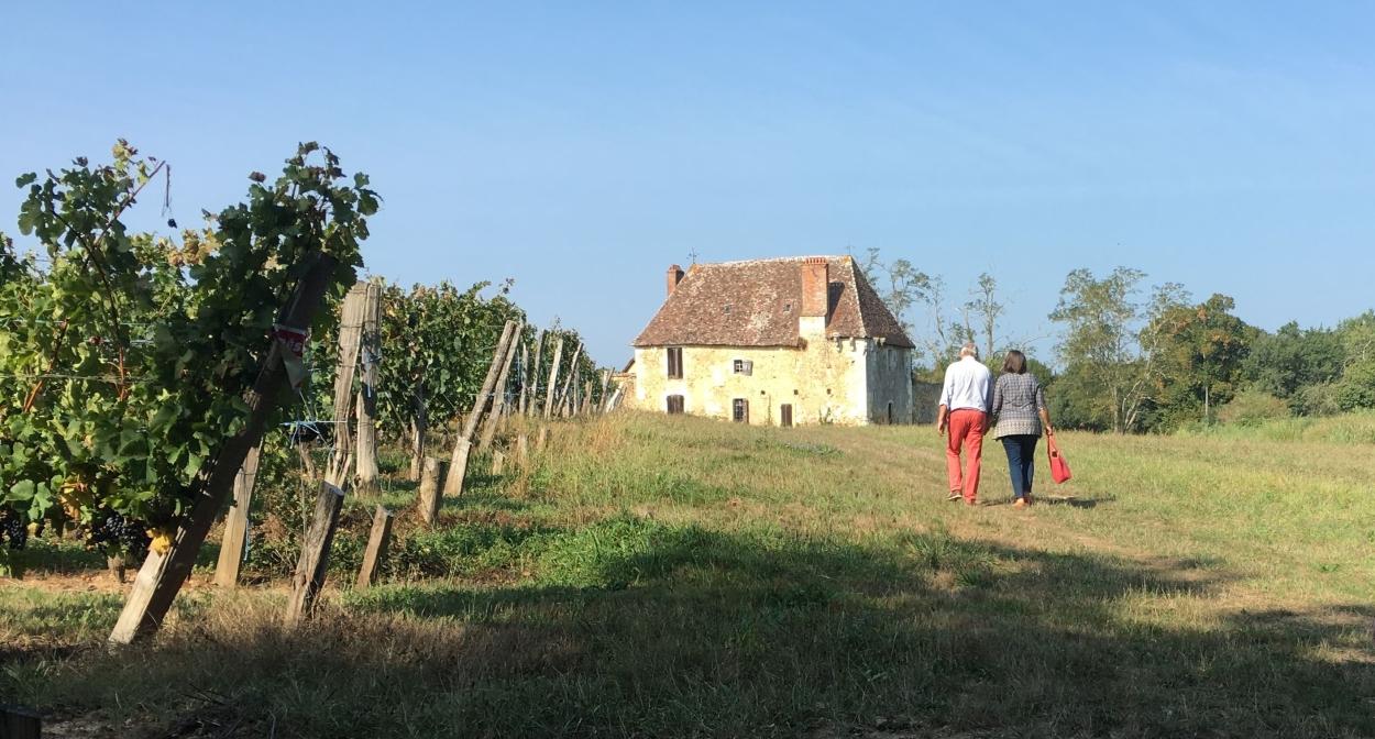 Randonnée dans le vignoble de Bergerac et Duras © IVBD