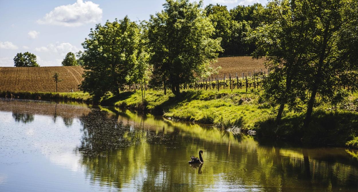 Le vignoble de Bergerac et Duras, réservoir de biodiversité © Loïc Mazalrey