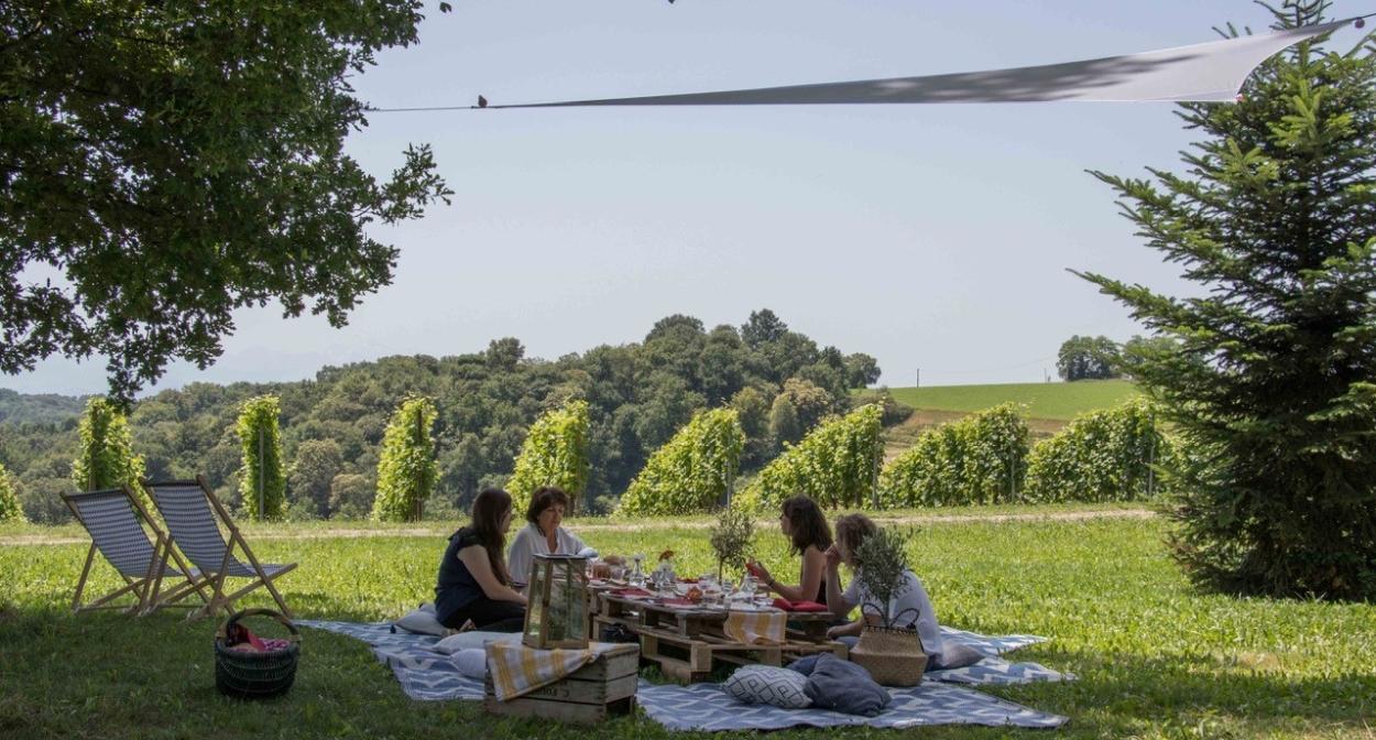 Picnicking surrounded by the vines of Nouvelle-Aquitaine © Soupçons en Jurançon