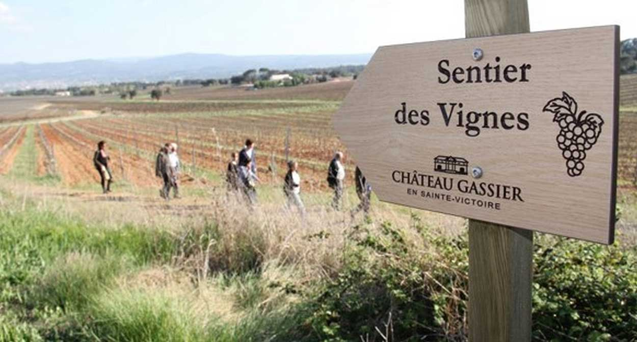 Trail of the Sainte-Victoire vineyard