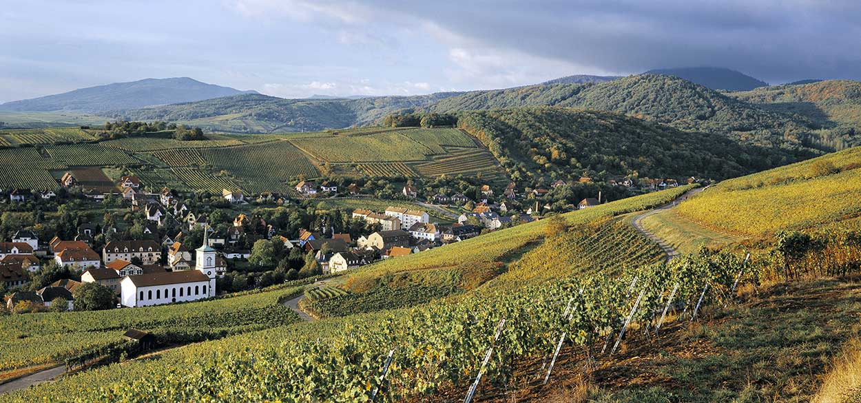 Fortified castles, wines from Alsace and fine food