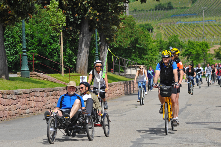 Slow up wine route in alsace bike fine food ©C. Fleith