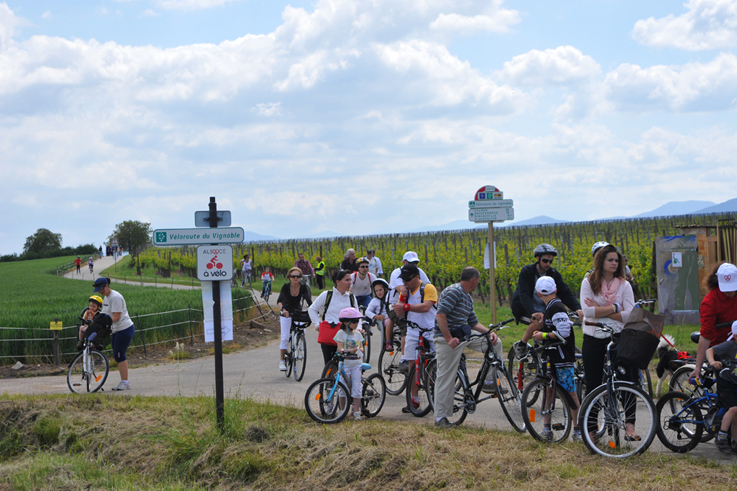 Slow up wine route in alsace bike tasting ©C. Fleith