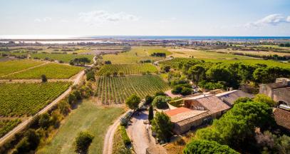 Domaine viticole près de Narbonne ©Château le Bouïs