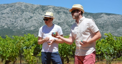 Sainte Victoire: wine and boules 1 ©Vignevasion