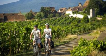 Balade à vélo dans le vignoble © ADT Infra