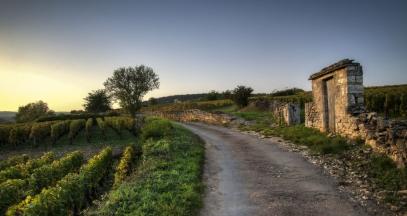 Winding burgundy roads ©Bourgogne Tourisme - Alain Doire