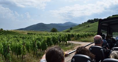 Bus panoramique en Alsace © Damien Foucré - ADT