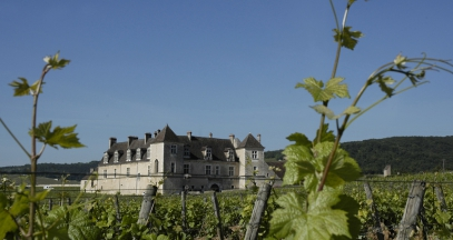 Chateau du Clos de Vougeot Bourgogne vineyards wine and discovery ©Office de tourisme de Dijon - Atelier Demoulin
