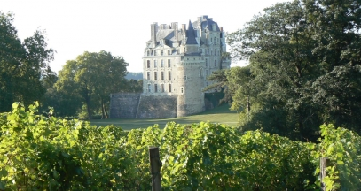 Chateau de Brissac, Loire Valley vineyard © Christian Vital