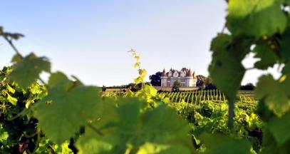 Château de Monbazillac, vignoble de Bergerac © Olivier Diaz de Zarate