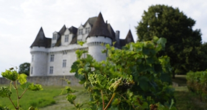 Château de Monbazillac, vignoble de Bergerac © MC Grasseau