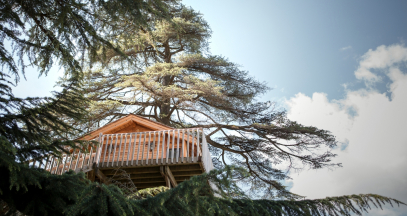 The tree house at Château Franc Mayne © Julie Rey