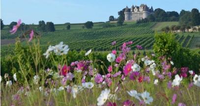 La Vinata Bergerac Vineyard ©F. Millo