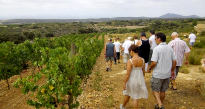 Crest Petit Roussillon vineyard walks in the vines discovery ©Dom Brial